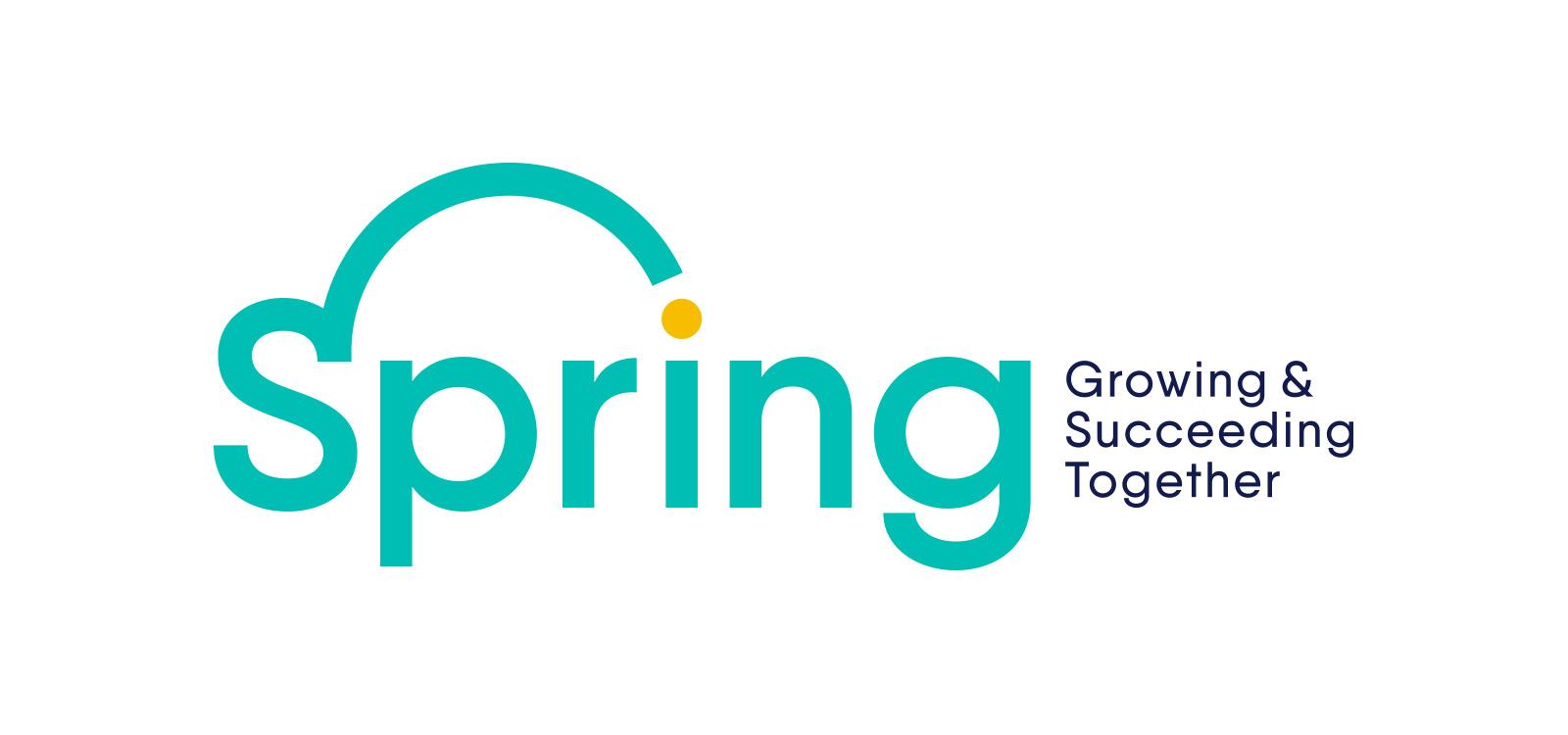 Spring Women's Network | Branding and Website Design | Dirty Little Serifs